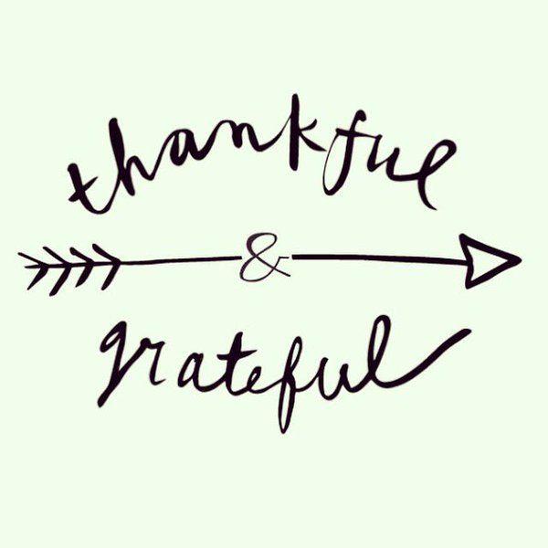 ee8d0b3b1a892efdf116728a830d3cd9--grateful-quotes-gratitude-quotes